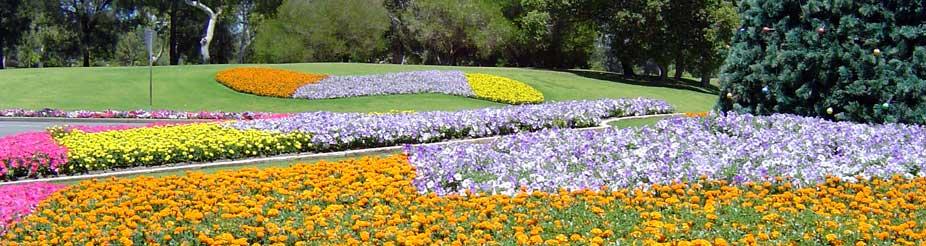 Western Australian Horticultural Council